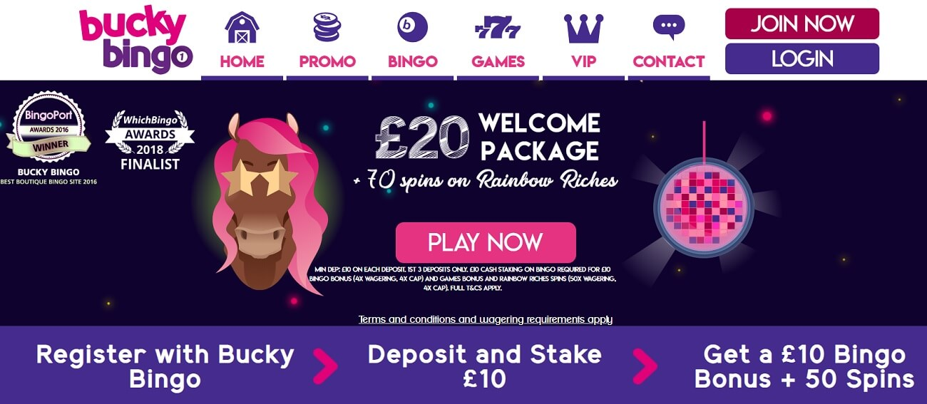 bucky bingo new player welcome bonus